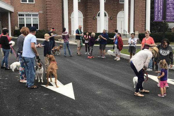 Blessing of the Animals 2018 - 03