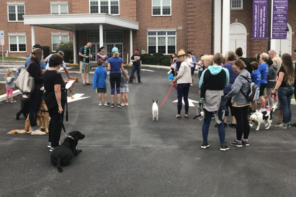 Blessing of the Animals 2018 - 18
